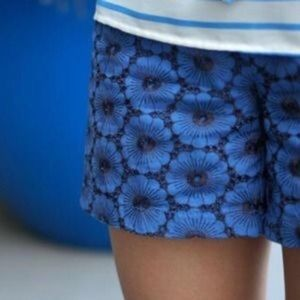 Anthro Elevenses floral embroidered lace shorts